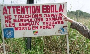 el-ebola-como-un-arma-biologica1